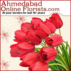 Order Flowers, Cakes and Gifts for your loved ones in Surat-Free Shipping Assured